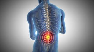 【腰を痛めない背筋の鍛え方】体幹に対して腕を引く軌道を考慮した筋トレ