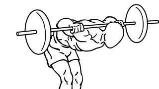 【バーベルグッドモーニング】脊柱起立筋の鍛え方を解説