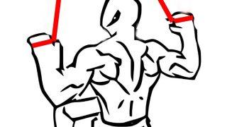 【チューブラットプル】自宅で簡単に広背筋を鍛える方法