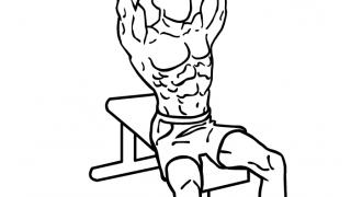 【バーベルショルダープレス】三角筋の基本トレーニングを動画付きで解説