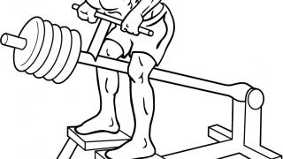 【Tバーローイング】フリーウエイト感覚の背筋マシン筋トレを解説
