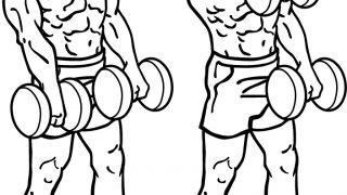 【ダンベルフロントレイズ】三角筋前部を集中的に鍛える方法