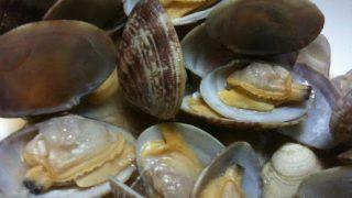 【筋トレむき貝類のアサリ】高タンパク質低カロリーでビタミンBの宝庫