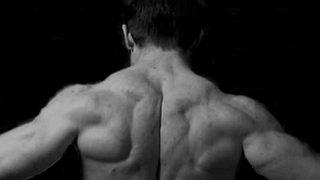 【背筋のバルクアップ筋トレ】自宅とジムそれぞれの筋肥大メニューを例示解説