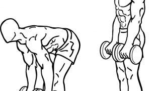 【ダンベルデッドリフト】背筋の基本自宅トレーニングを解説