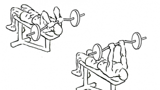 【バーベルフレンチプレス】上腕三頭筋の基本筋トレを解説