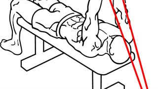 【チューブプルオーバー】縦方向収縮で大胸筋・広背筋に効かせる筋トレ