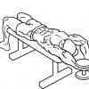 【ベントアームダンベルプルオーバー】縦方向に大胸筋を刺激する筋トレ方法を解説