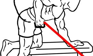 【チューブキックバック】上腕三頭筋長頭を集中的に鍛える方法