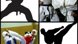 【空手とテコンドーの違い】公式ルールの比較と戦い方の相違点