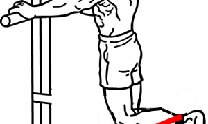 【チューブレッグカール】ゴムバンドを使ったハムストリングスの筋トレ方法